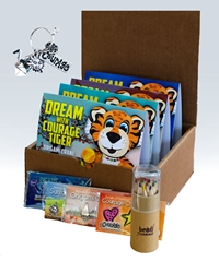 DREAM Activity Bundle